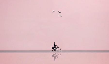 Menos é mais! Fotografias de Charlotte van Driel